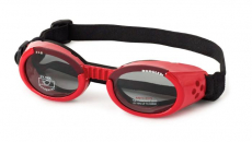 11375_Doggles_red
